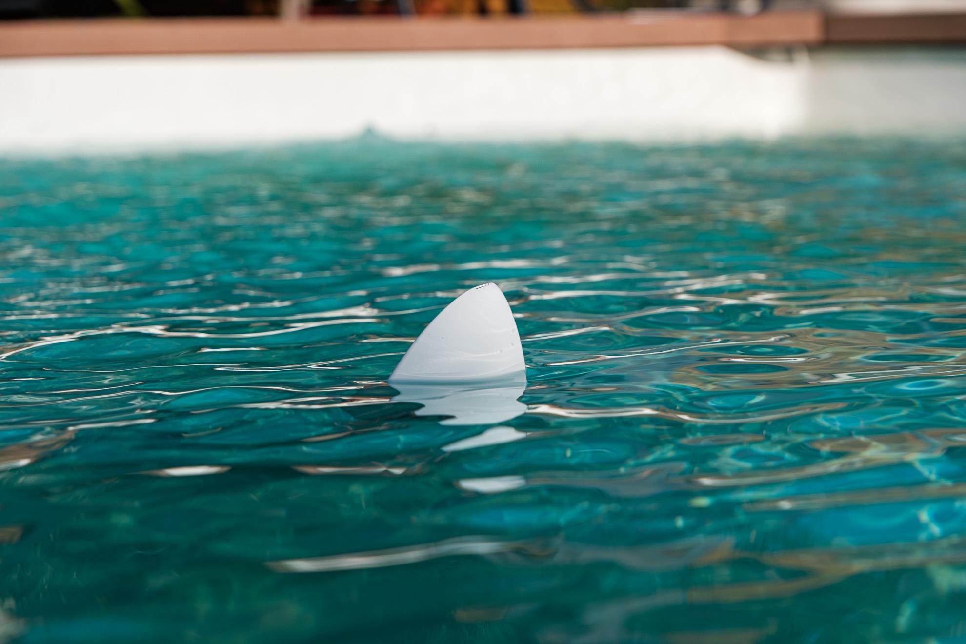 Flipr Start : adoptez un requin dans votre piscine (et ça lui fera du bien!)